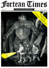 Fortean Times #31